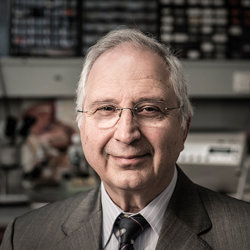 Distinguished Professor Anatoly Rozenfeld. Photo by Paul Jones.