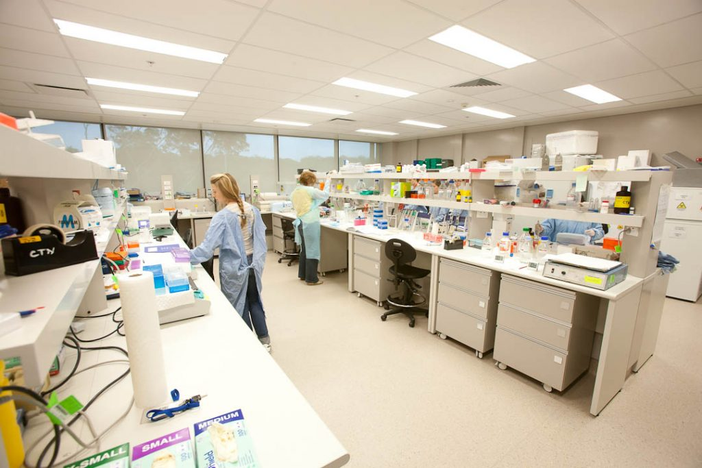 Laboratory in IHMRI's building at the University of Wollongong.
