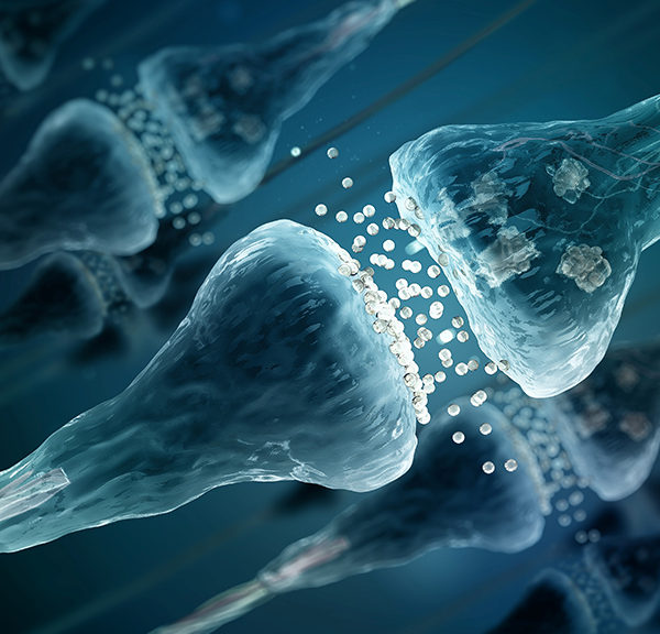 Neuroscience at the clinical interface
