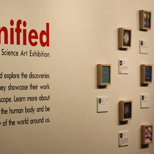 Magnified Science Art Exhibition