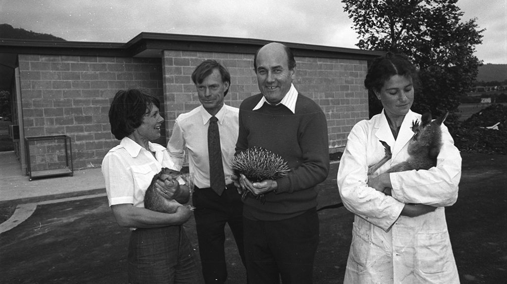 October 1978. Animal House and Department of Biology staff - Ann Lee holding bandicoot, Professor Duncan Brown, Peter McNamara holding echidna and Linda Deitch holding wallaby.